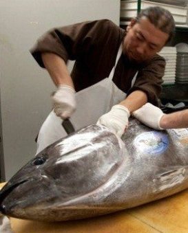 Michael Ovitz's Hamasaku sushi chef Yoya Takahashi